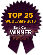 photo of webcam winner callout