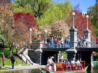 boston-public-garden