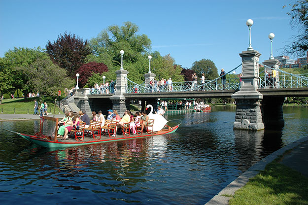 Swan Boats at Boston Public Garden