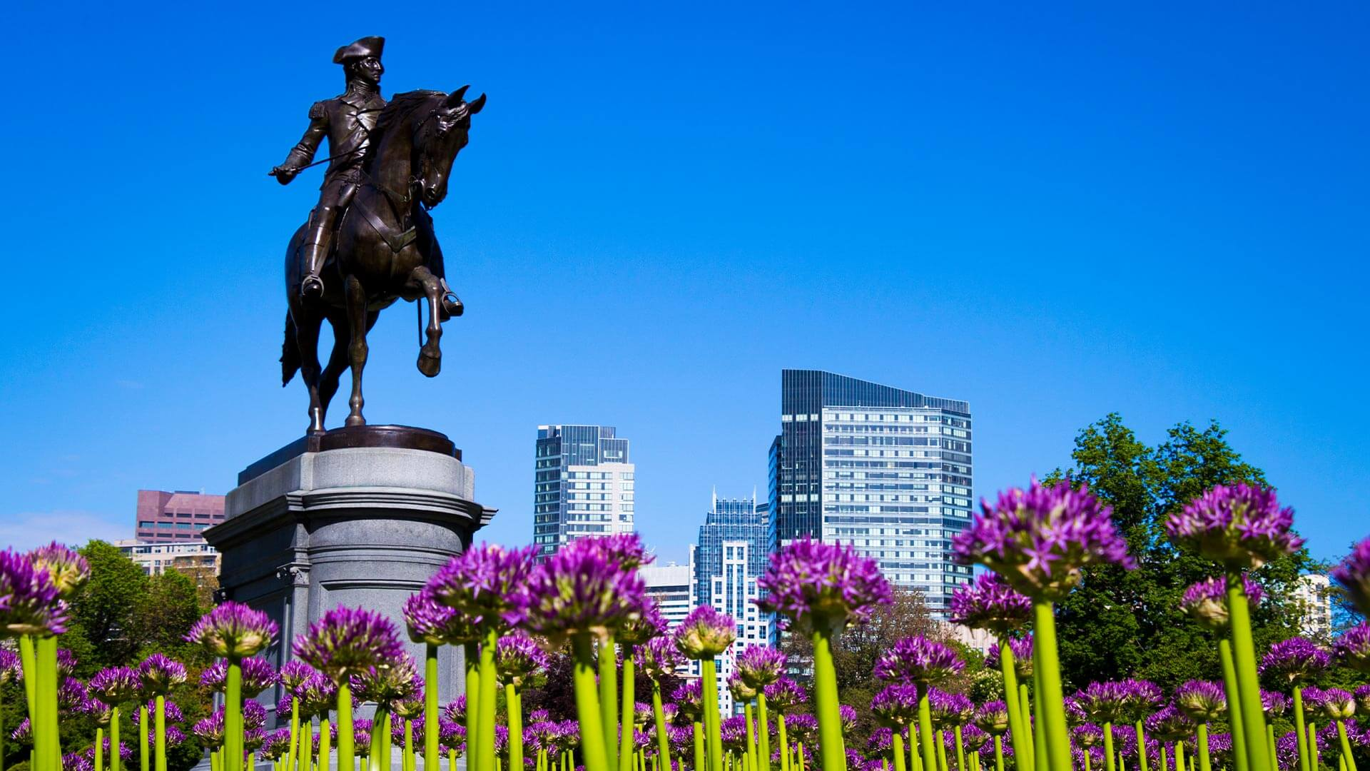 Featured image of Things to Do Near Boston Common