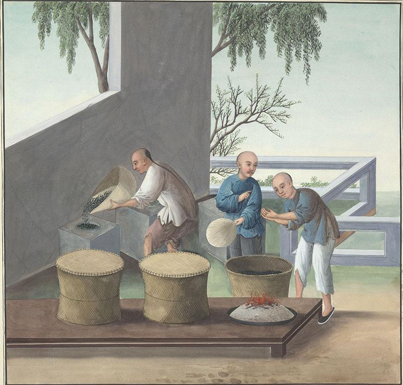 Chinese tea garden where men dry their tea leaves