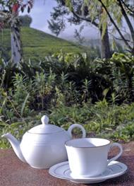 Tea pot and cup of tea from Sri Lanka